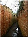 TQ2076 : Aynscombe Path, Mortlake by Stephen McKay