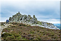 SO3698 : Manstone Rock, Stiperstones by Jeff Buck