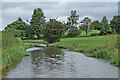 SJ9353 : Canal and pasture east of Endon in Staffordshire by Roger  Kidd