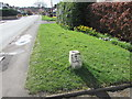 SO9623 : Old milestone (London side), Bouncers Lane, Prestbury by Jaggery