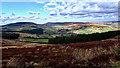 NZ5403 : Back of the Cleveland Hills by Mick Garratt