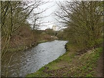SJ9398 : The River Tame  by Graham Hogg