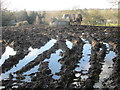 TQ2492 : Waterlogged field next to Burtonhole Lane by Peter S
