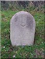 SU6406 : Old Boundary Marker by Milestone Society