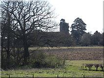 TM3669 : St. Peter Church, Sibton by Adrian Cable
