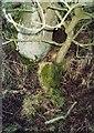 NZ0181 : Old Milestone by IA Davison