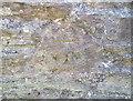 SX8060 : Ordnance Survey Cut Mark by Adrian Dust