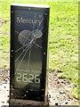 "NZ3957 : ""Mercury"" on the W2W by Oliver Dixon"