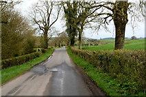 H6056 : Ballynasaggart Road, Sess / Carran by Kenneth  Allen