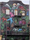 SJ8498 : Colourful Birds on Faraday Street by David Dixon