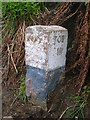 NM4954 : Old Milestone by the B8073, west of Tobermory by Milestone Society