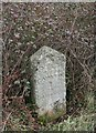 ST0307 : Old Milestone by the A373, Honiton Road, Stoneyford by T Jenkinson