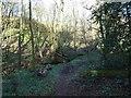 SO7799 : Footbridge View by Gordon Griffiths