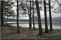 NH9718 : Loch Garten by Anne Burgess