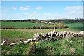 SP3814 : Towards Bridewell Farm by Des Blenkinsopp
