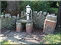 ST6086 : Village pump on The Green by Neil Owen
