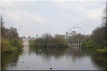 TQ2979 : View of the London Eye and government buildings from St. James's Park by Robert Lamb