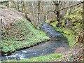 NH6657 : Killen Burn at Bog of Auchterflow by valenta