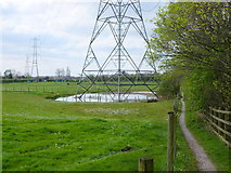 SD7603 : Path South of the M60 at Wardley Moss by Gary Rogers