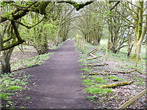 SD7603 : Path on the North Edge of Clifton Moss by Gary Rogers