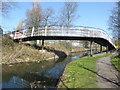 SJ9400 : Foot bridge Wyrley & Essington Canal, Wednesfield by Chris Allen