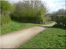 SE3531 : Junction of alternative paths in Temple Newsam Country Park, Leeds by Humphrey Bolton