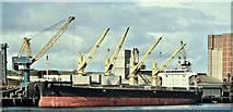 """J3576 : The """"Ocean Fortune"""", Belfast harbour - April 2019(1) by Albert Bridge"""