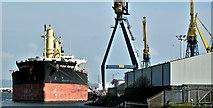 """J3576 : The """"Ocean Fortune"""", Belfast harbour - April 2019(2) by Albert Bridge"""