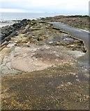 NO4102 : Lower Largo pier by Bill Kasman