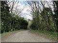 TF9007 : Road between Bradenham and Holme Hale by Adrian S Pye