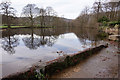 SK2083 : River Derwent at Bamford Mills by Ian S
