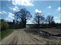 TM4899 : Track at Ashby Hall Farm by Adrian Cable