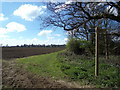 TM4899 : Footpath to Market Lane by Adrian Cable