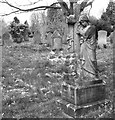 TG2008 : The Vines Family grave by Evelyn Simak
