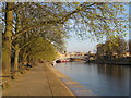 SE5952 : On the bank of the Ouse, York by Malc McDonald