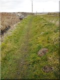 NO5101 : Footpath approaching the A917 by Richard Sutcliffe