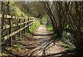 SY9582 : Path below Corfe Castle by Derek Harper