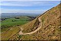 NZ5712 : A horse's route up Roseberry by Mick Garratt
