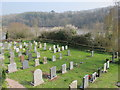 SX8457 : Stoke Gabriel, lower churchyard, tidal mill pool and blossom by David Hawgood
