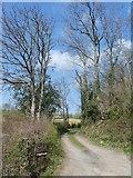 SX8391 : Access to Pitt Farm by David Smith