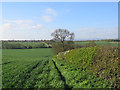 SK5723 : Rempstone: looking into Leicestershire by John Sutton