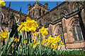 SJ4066 : Spring at Chester Cathedral by Jeff Buck