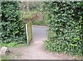 TG2408 : Pedestrian access to Rosary Cemetery by Evelyn Simak