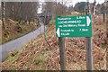 NN5627 : Glen Ogle Trail at the railway path by Jim Barton