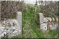 NT2187 : Former gateposts, Dunearn by Becky Williamson