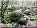 NY6368 : The Popping Stone by Andrew Curtis
