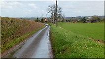 SO8466 : Owlhill Lane by Jonathan Billinger