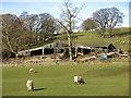 NY9038 : Barns at Weeds by Mike Quinn