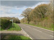 TQ2914 : A273 Brighton Road near Hassocks by Malc McDonald