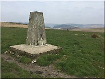 SS8393 : Trig point by Alan Hughes